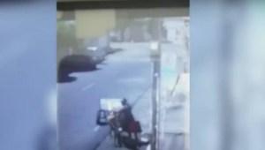 jumento 300x170 - Polícia recupera carroça e jumento roubados na Paraíba