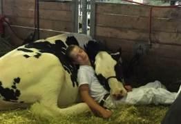 Foto de jovem e sua vaca dormindo abraçados comove a internet