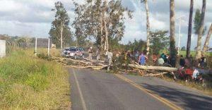 arvore cai e mata motociclista 300x156 300x156 - TRAGÉDIA: Idoso morre após árvore cair em cima dele; nora infarta e morre ao receber notícia