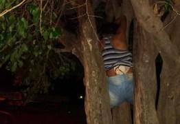 Mulher fica presa em árvore ao tentar entrar na casa do ex