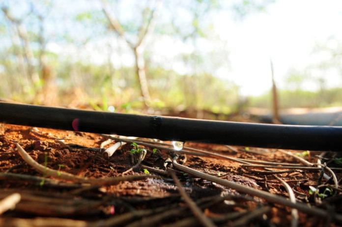 7858 - Paraiba concorre a prêmio nacional de uso sustentável da água
