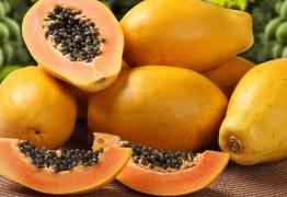 Mamão papaia tem ação anticancerígena, diz pesquisa da USP