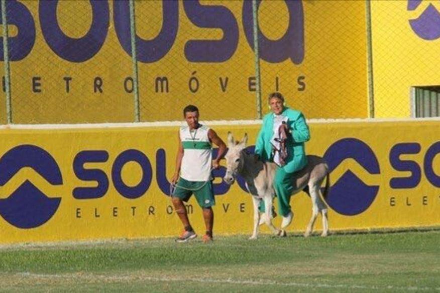 jumento   sousa - Time do Sousa pode ser punido por permitir entrada de jumento em estádio