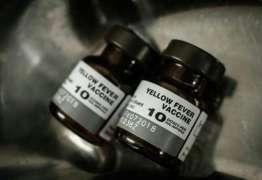 Anvisa permite que rede privada importe vacina contra a febre amarela