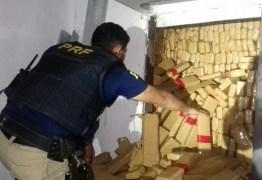 VEJA VÍDEO: PRF apreende cerca de 2,4 toneladas de maconha em caminhão frigorífico