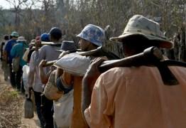 Polícia Federal resgata cerca de 900 pessoas em situação análoga a escravidão