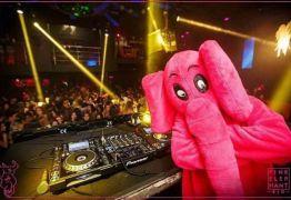 A Homofobia com cara de Elefante que deveria ser cor de rosa – Por Alana Yaponirah