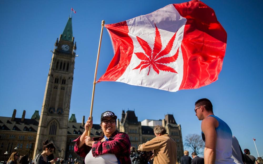 000 15w9ny - Senado canadense legaliza uso recreativo da maconha em todo o país