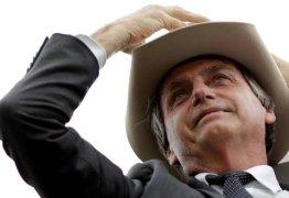 Bolsonaro e Trump: perfis parecidos, mas nem tanto