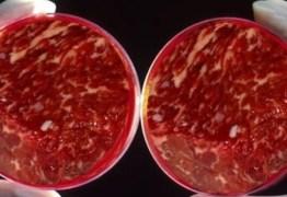 VEJA VÍDEO – Carne sintética ganha registro e está perto de ser vendida – conheça o processo e os riscos desta revolução alimentícia