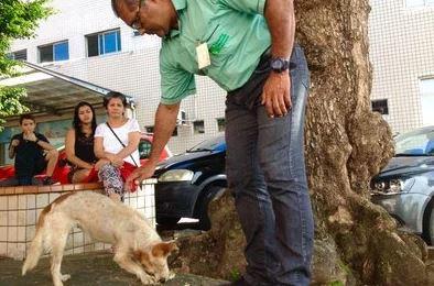 Capturaro - FIDELIDADE: Cadela espera há uma semana na porta de hospital por dono que morreu