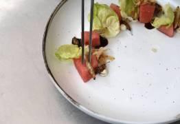 Você ainda vai comer insetos – Por Ronaldo Lemos