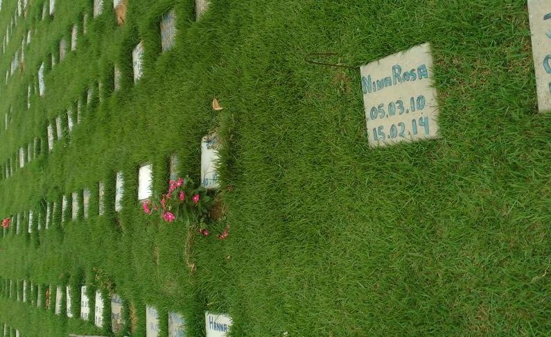18831f3b 9030 401d ad42 89376a5db730 - MERCADO DA MORTE: Saiba tudo sobre o pioneiro cemitério para animais na Paraíba
