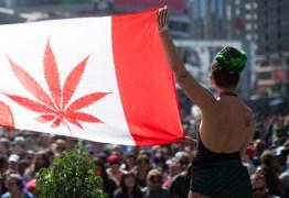 Canadá é o 2º país do mundo a legalizar a maconha para fins recreativos