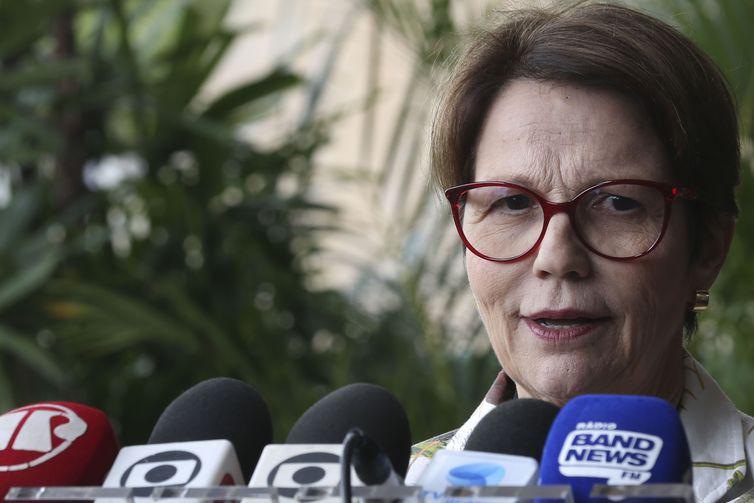 Futura ministra da Agricultura pretende manter 'boa relação' com Meio Ambiente
