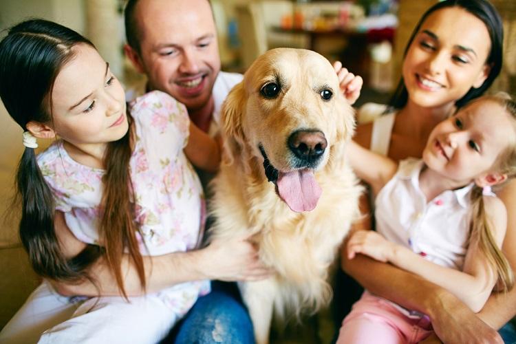 filho quer animal estimacao familia cachorro - Pesquisa brasileira vai estudar Covid-19 em pets de cinco capitais