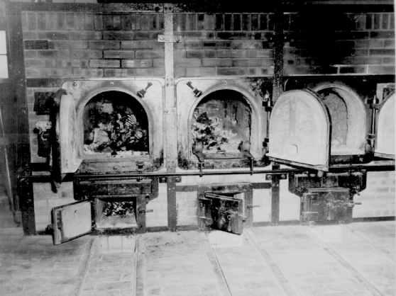 """forno 1 - """"OS FORNOS DE HITLER"""" Revelado horror em Auschwitz: VEJA VÍDEO"""