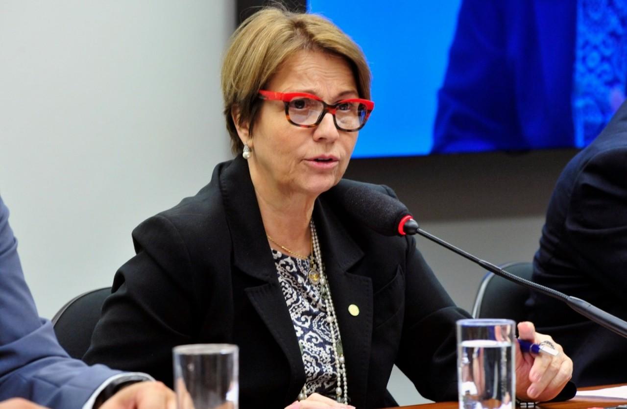 Ruralistas indicam, e Bolsonaro anuncia Tereza Cristina como ministra da Agricultura
