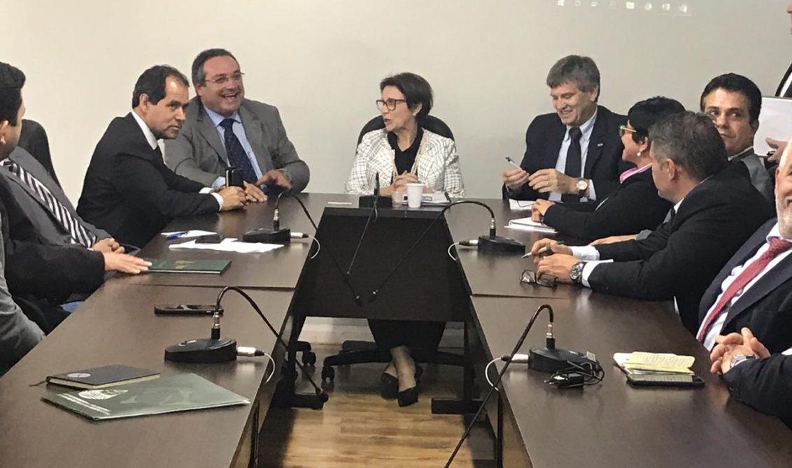 Rômulo Montenegro se reúne com futura ministra da Agricultura, em Brasília