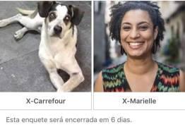 'Qual cadela fará mais falta?': apoiador de Bolsonaro compara Marielle Franco com cachorra morta no Carrefour