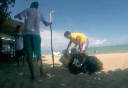Comunidade tradicional de pescadores conquista direito de morar em praia na Paraíba