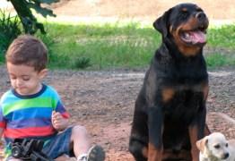 Garotinho de 5 anos passa mal enquanto mãe dorme e cachorro da família salva vida da criança