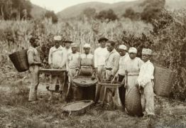 DÍVIDA HISTÓRICA: Brasil deve mais de R$ 18 bilhões em indenizações a parentes de ex-escravos – Por Ana Lúcia Araújo