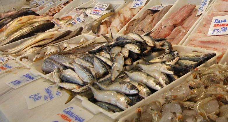 peixes 782x420 - SANTA COMIDA CARA: pesquisa do Procon-JP registra diferença de até R$59,99 no preço do quilo do peixe