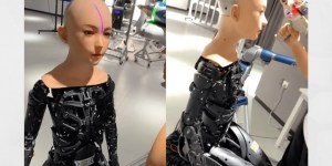 ds dolls robotics 1600x800 300x150 - Seis coisas que os robôs sexuais vão poder fazer no futuro