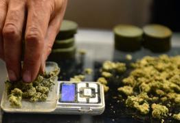 LEVANTAMENTO NACIONAL: Governo 'esconde' números sobre epidemia de drogas no Brasil
