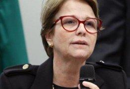 """""""Brasileiro não passa muita fome porque tem muita manga"""", diz ministra da Agricultura"""