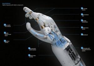 pegar objetos 300x211 - Seis coisas que os robôs sexuais vão poder fazer no futuro