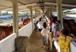 Governo do Estado abre exposição de animais em Campina Grande neste domingo