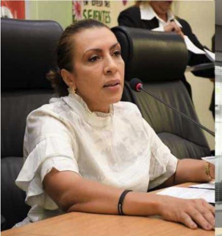 cida ramos - 'Deputado não está acima de ninguém', diz Cida Ramos sobre decisão do STF em estender imunidade a deputados estaduais