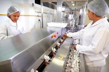 noticia 188457 - PERDA ANUAL DE R$ 1 BI: Saúde suspende produção de 19 medicamentos gratuitos do SUS; Veja lista