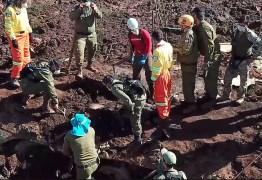 Bombeiros encontram mais o corpo de mais uma vítima de Brumadinho neste domingo