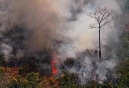 VERDE BRASIL: Governo registra diminuição de focos de incêndio na Amazônia