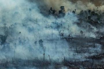 incendio na area de protecao ambiental jamanxim no municipio de novo progresso pa 1566669691939 v2 450x450 - Banco de Desenvolvimento da América Latina doa R$500 mil para combater incêndio