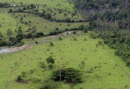 Prazo para entrega da declaração de propriedade rural, começa hoje