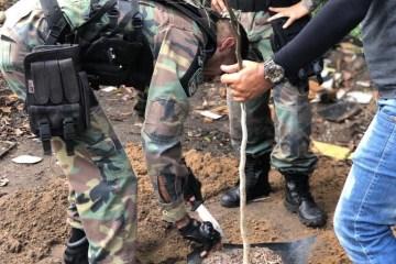 3a4fb8af043ac0e7eae9b20f7343d8fc e1569585101150 - DIA DA ÁRVORE: Prefeitura realiza ação de preservação na Mata do Xém-Xém