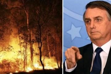 Capturar 31 - NYT: Bolsonaro é inspiração para tornar ecocídio crime contra a humanidade