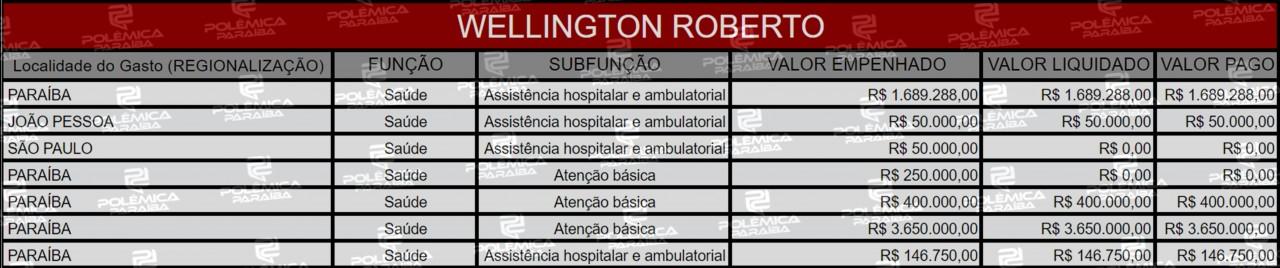 Lupa 17 Tabela Wellington Roberto - LUPA DO POLÊMICA: Conheça as áreas beneficiadas pelas emendas parlamentares dos deputados federais paraibanos em 2019