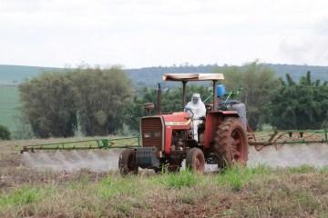 agrotoxicos - Liberar novos agrotóxicos é melhor que manter os antigos - por Xico Graziano