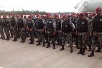 31661418977 9026cbce37 o - Força Nacional atuará por mais 180 dias no combate ao desmatamento