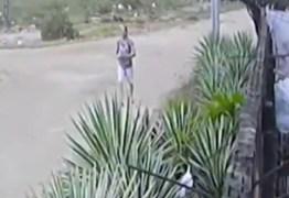 Mulher que jogou gato para ser morto por pitbull em João Pessoa é identificada – VEJA VÍDEO