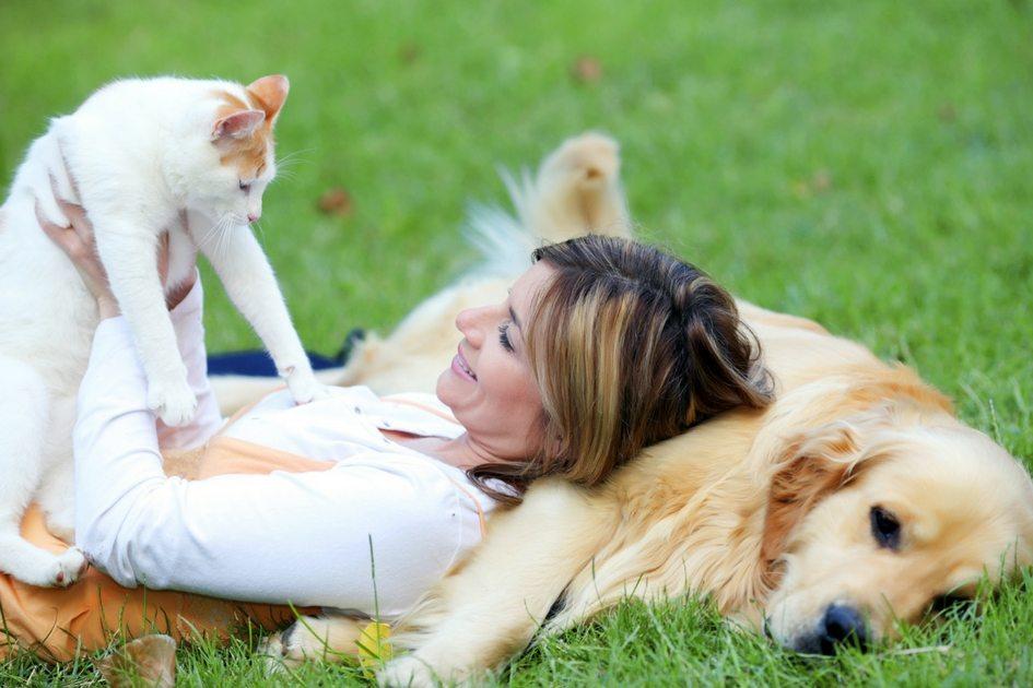 Mulher com gato branco e cachorro golden 1 - Animais de estimação podem promover saúde e contribuir para o tratamento de doenças, afirma especialista
