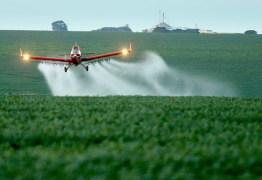 AGRONEGÓCIO: Governo autoriza 57 agrotóxicos; total de liberações no ano vai a 382