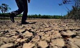 ESTIAGEM: Governo decreta situação de emergência em 177 municípios da PB