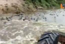 Trator invade rio no Pantanal e passa por cima de centenas de jacarés – VEJA VÍDEO