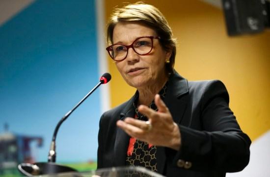 mcmgo abr 3010191447 - Ministra apresenta experiência brasileira com agricultura de baixo carbono, durante evento nos EUA